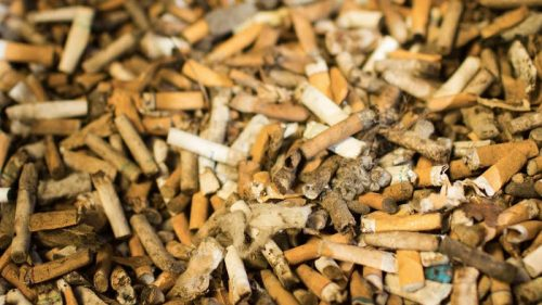 Terracycle recycles cigarette butts in Australia