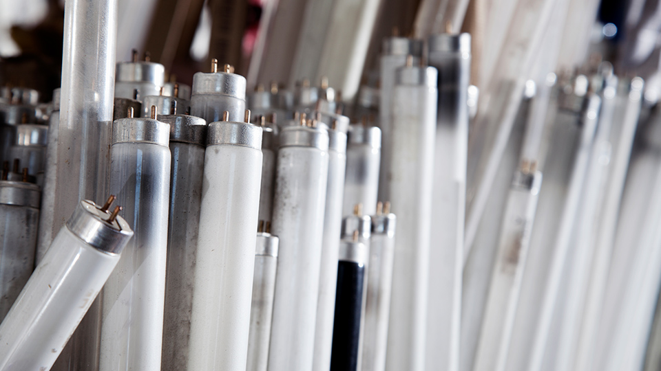 How Your Workplace Can Run Its Own Lighting Recycling Scheme